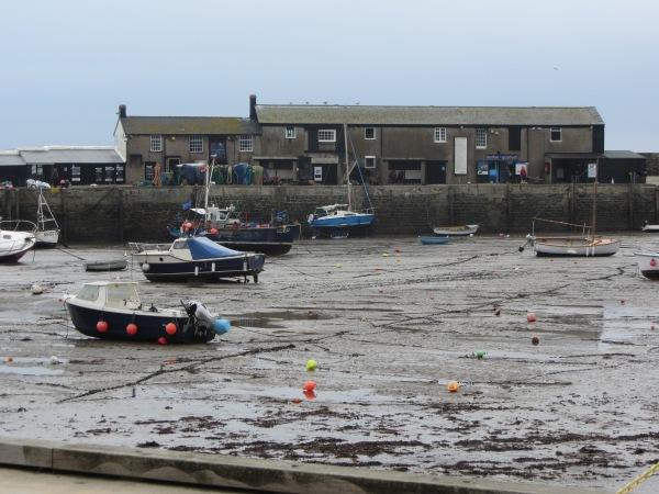 Desolate harbour